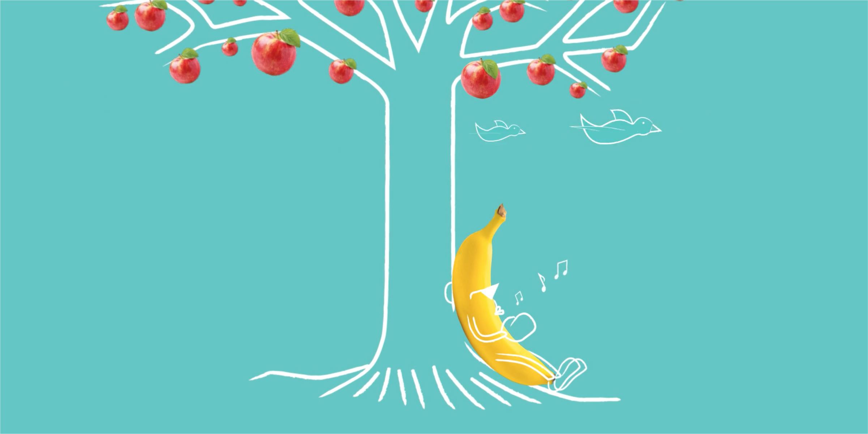 The Fruit Box Animation Screenshot