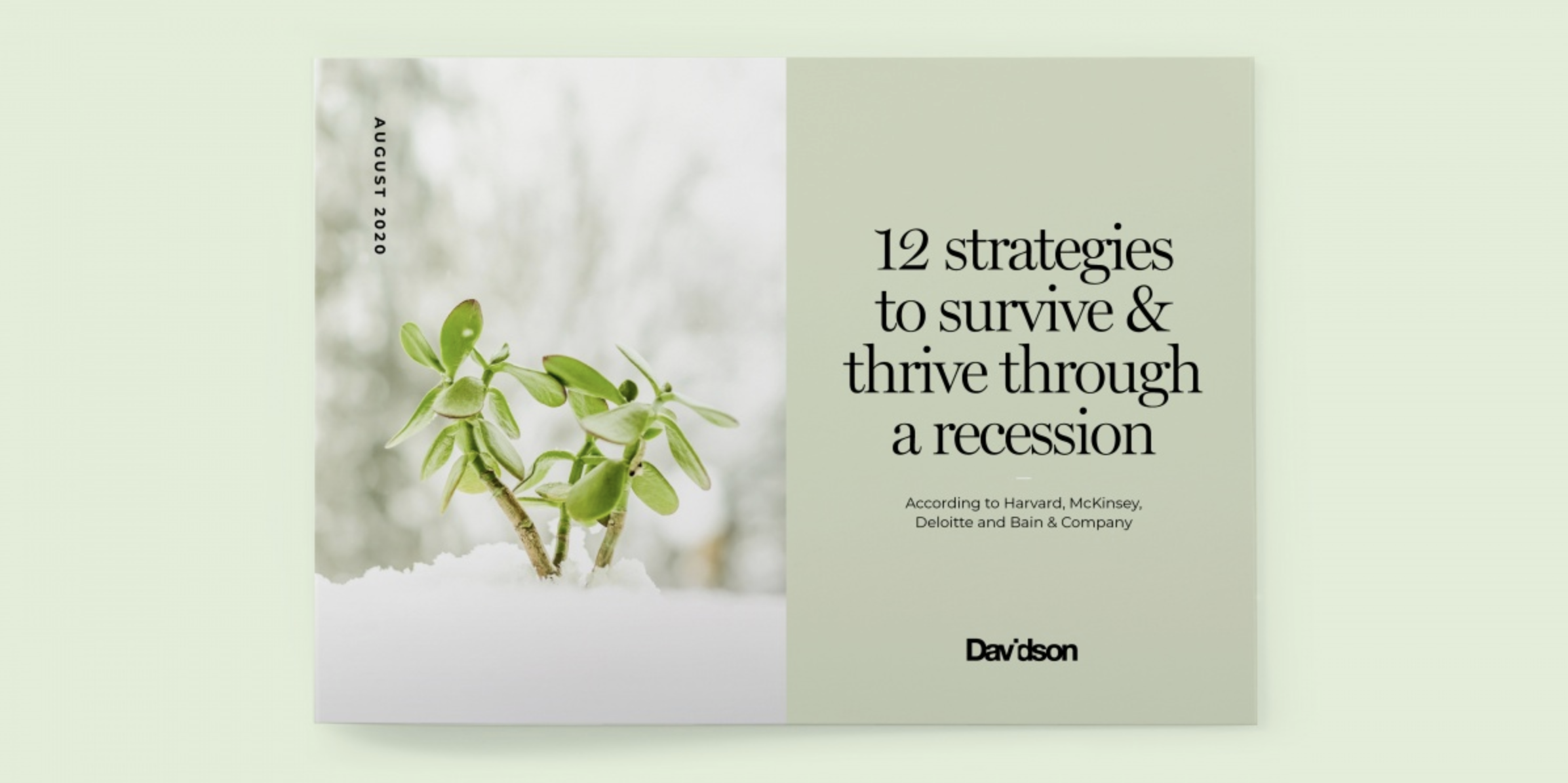 12 Strategies to Survive & Thrive a Recession