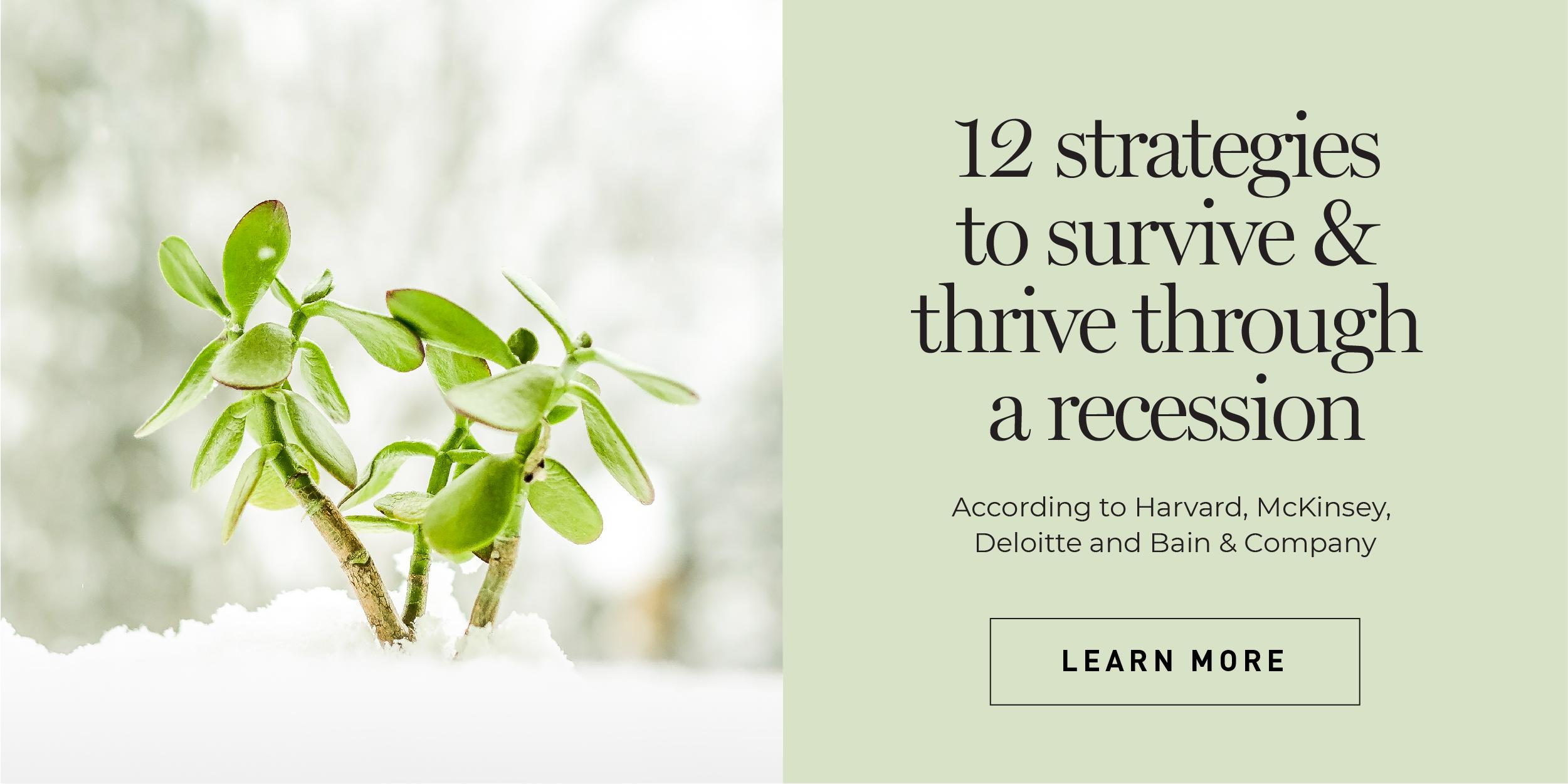 Recession Survival Strategies Harvard McKinsey Deloitte