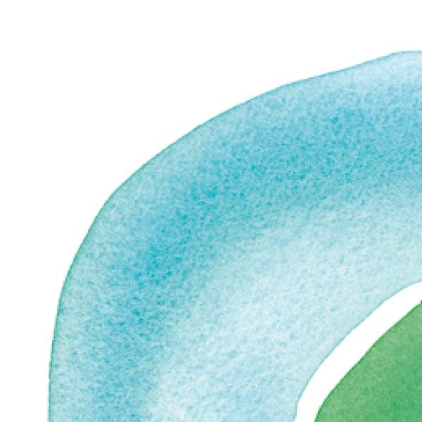 Davidson Branding Corporate Lizard Island Brand Identity Logo Design Nature Wonderland Water Wildlife Watercolour