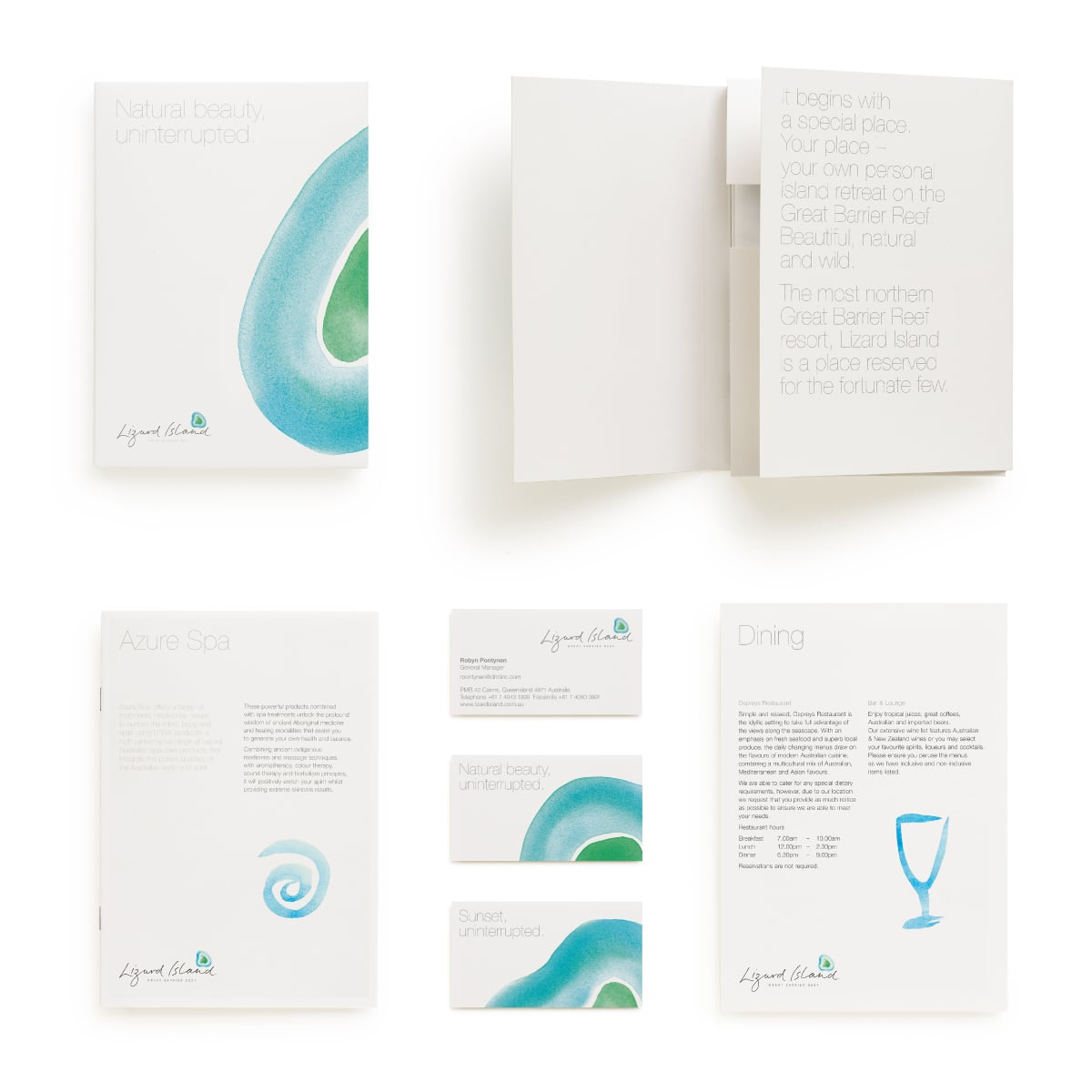 Davidson Branding Corporate Lizard Island Brand Identity Logo Design Water Wildlife Watercolour Stationery