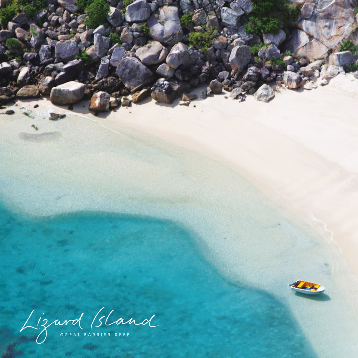 Davidson Branding Corporate Lizard Island Brand Identity Logo Design Water Photography