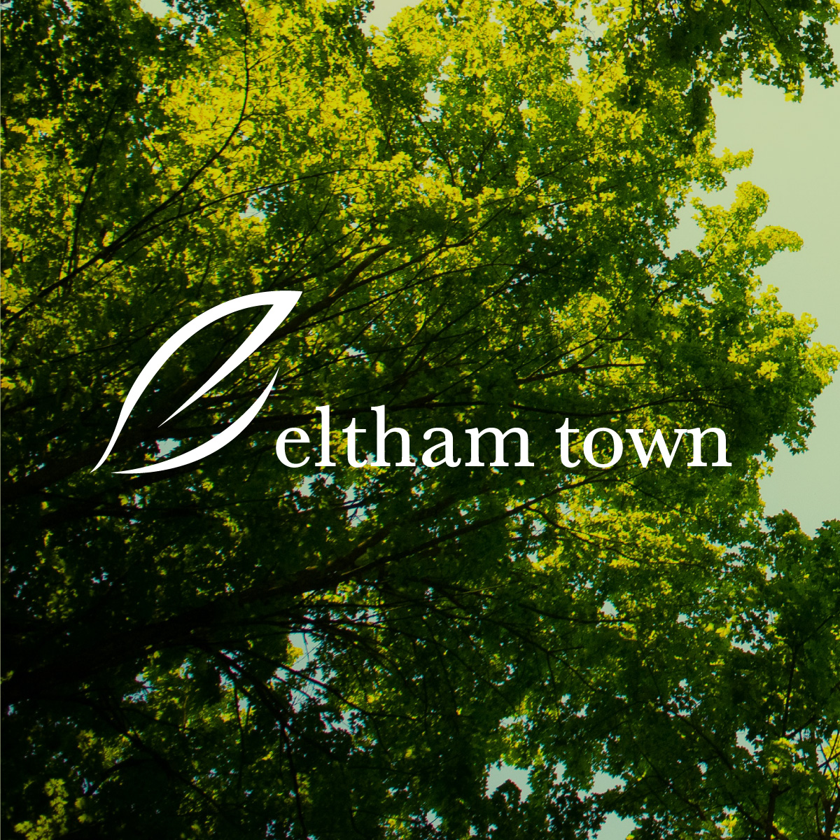 Eltham Town Branding and Jazz Festival Branding