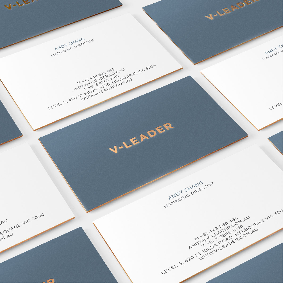 V-Leader Digital Website Development