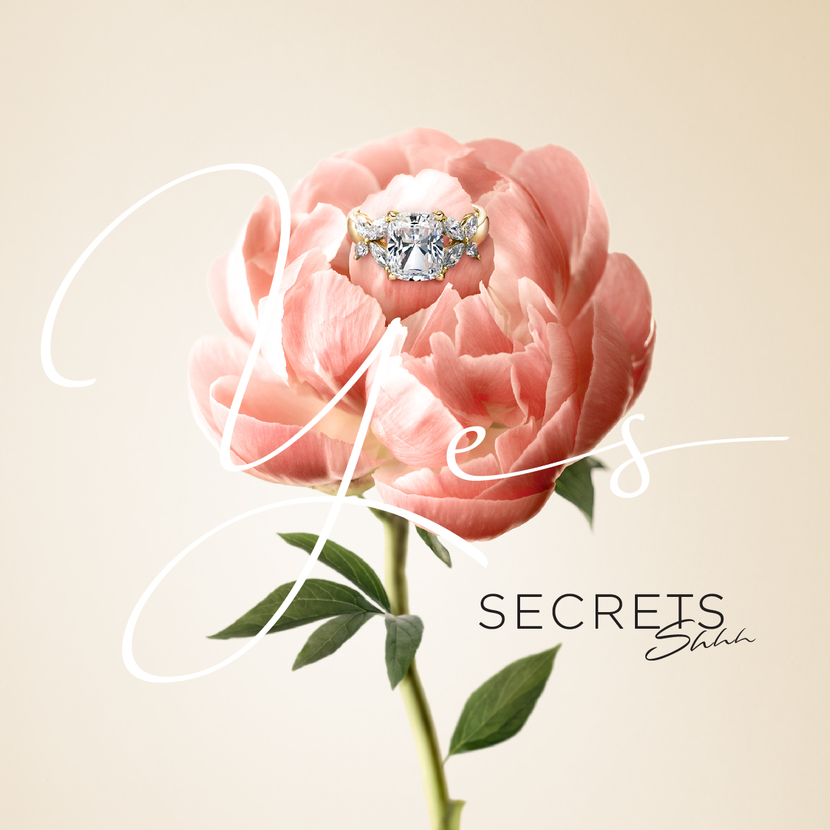 Secrets Shh Brand Refresh Retail Design