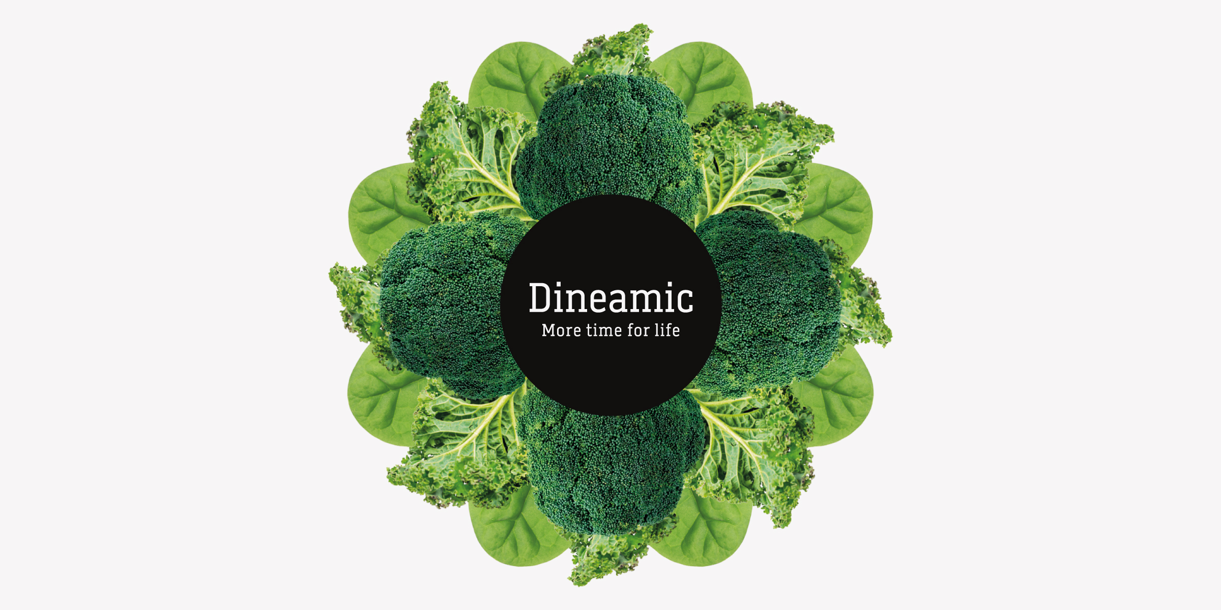 Davidson Branding FMCG Dineamic Packaging Visual Language Hero Kaleidoscope Greens Banner