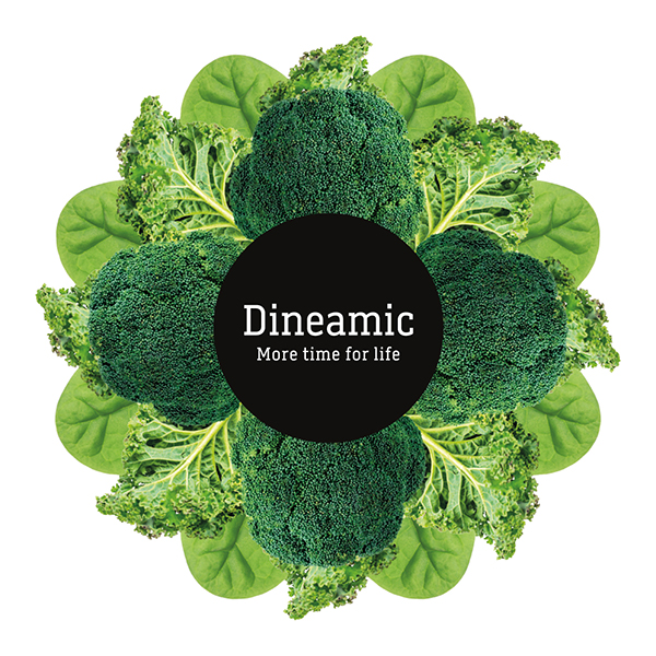 Davidson Branding FMCG Dineamic Visual Language Hero Kaleidoscope Greens Melbourne Design Studio